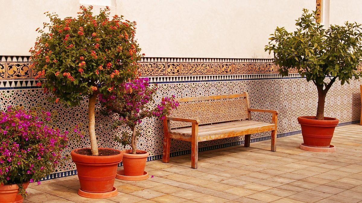 Terassenpflanzen - mediterranes Ambiente auf konsumguerilla.net